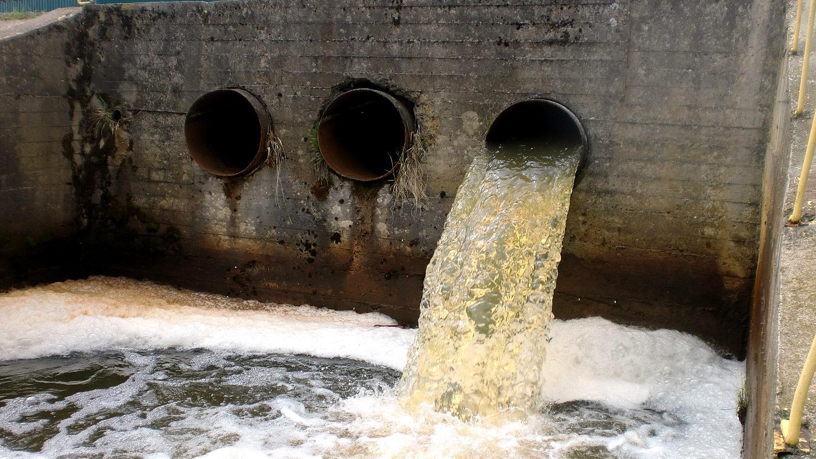 В Цну попадают неочищенные сточные воды
